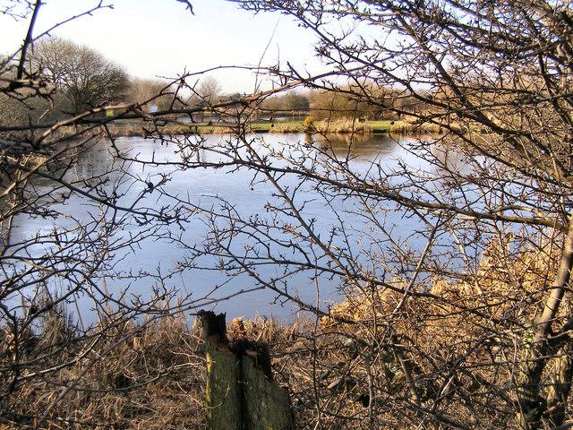 Browns Road Lagoons, Blackshaw Brook