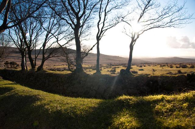 View toward Kings Tor - Dartmoor