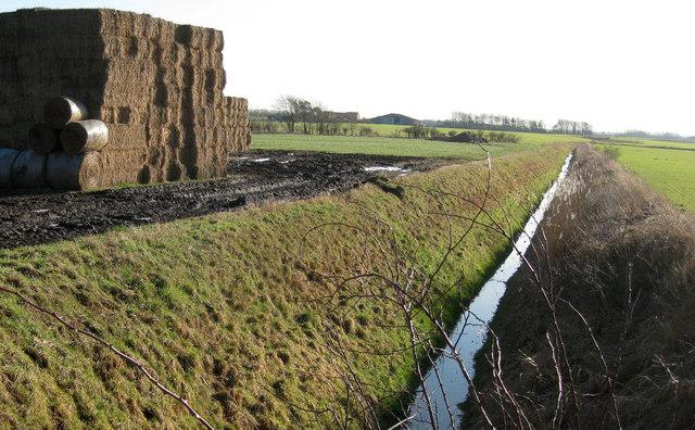 North Kelsey Land Drain
