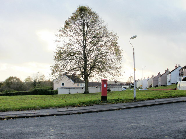 Tree and postbox, Brynglas