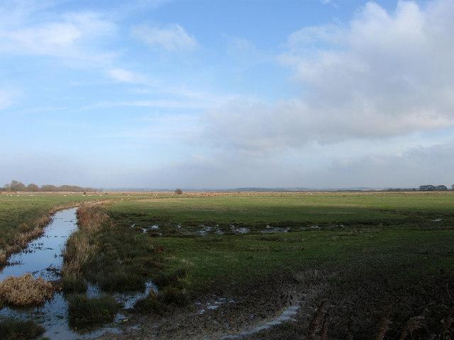 Sluice Trade Marsh