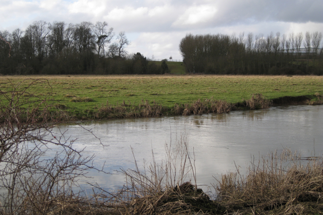 Flood meadow by the Avon