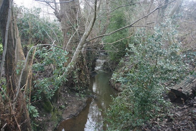 An unnamed tributary of the River Medway, Forest Row