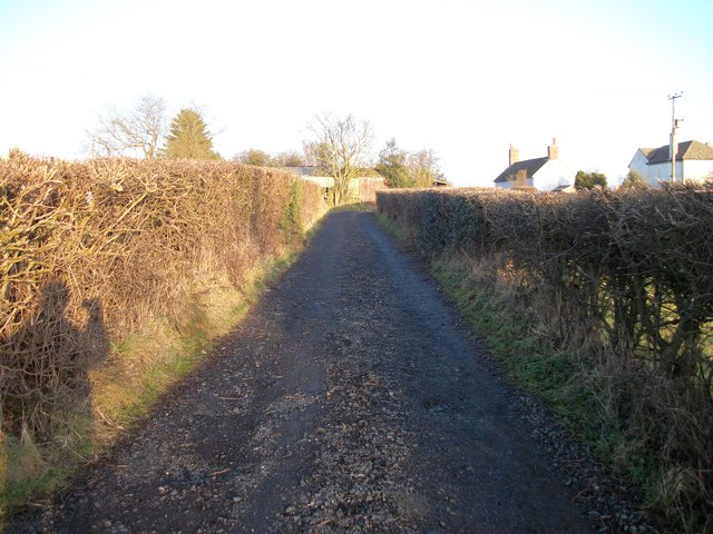 Titrail Lane To The Common