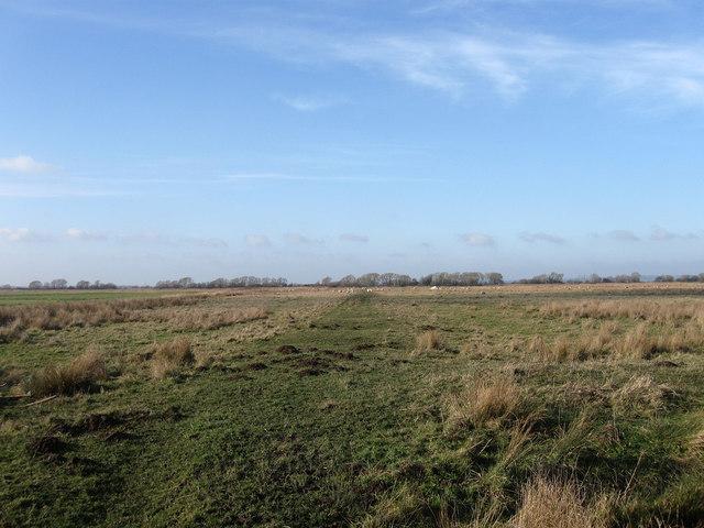 Road Marsh