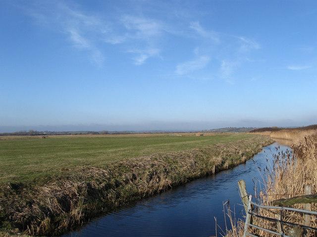 Wrenham Stream