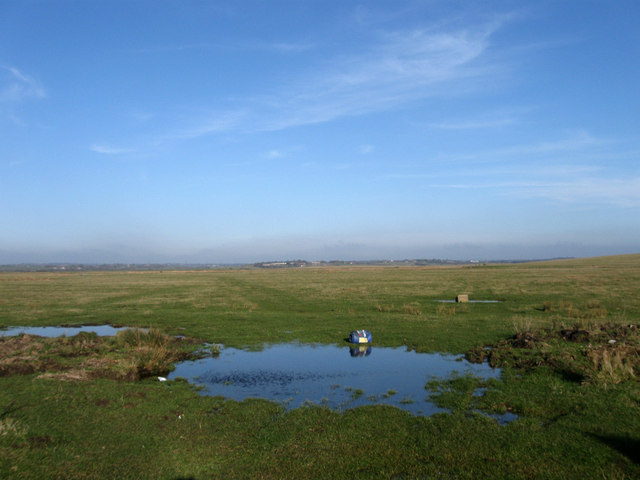 Great Wrenham Marsh