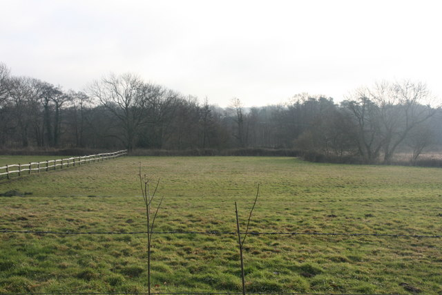 View south from the footpath