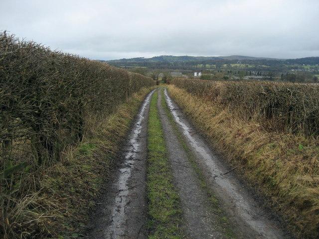 Green Lane leading to Brownsills