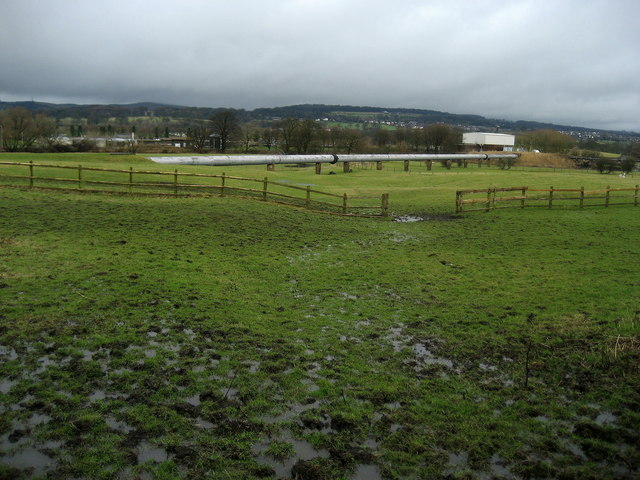 Soggy Fields near Brownsills