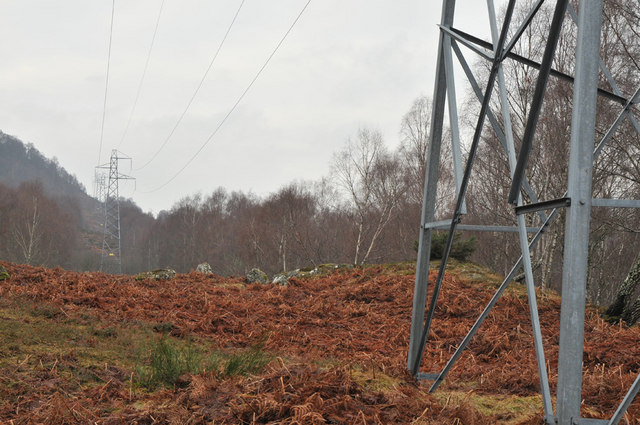 Pylons in Muirton Wood