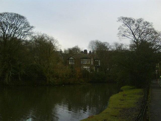 The Pond, Howard Park