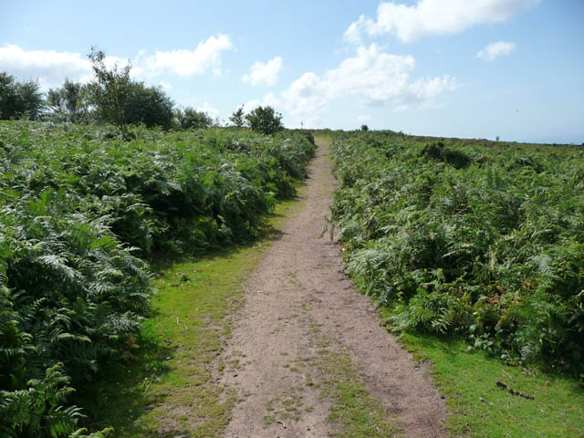 Coast path above Burgundy Chapel Combe