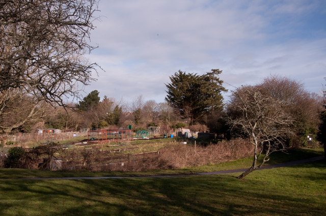 Allotments, Central Park - Plymouth