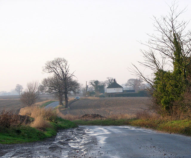 Ash Tree Road in the dusk