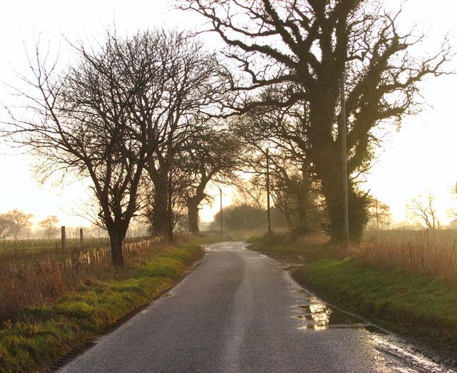 Kittles Lane in the dusk