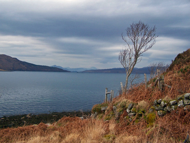 Wall and tree above the loch