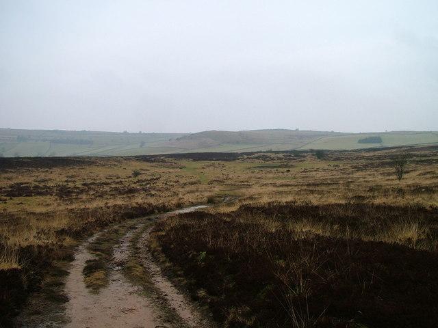 Path on Tarn Moor
