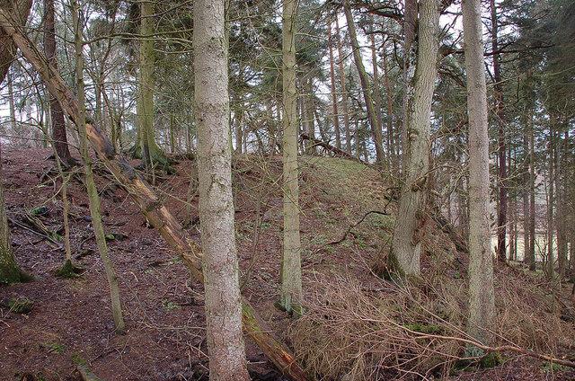 Hill fort site, Stobo