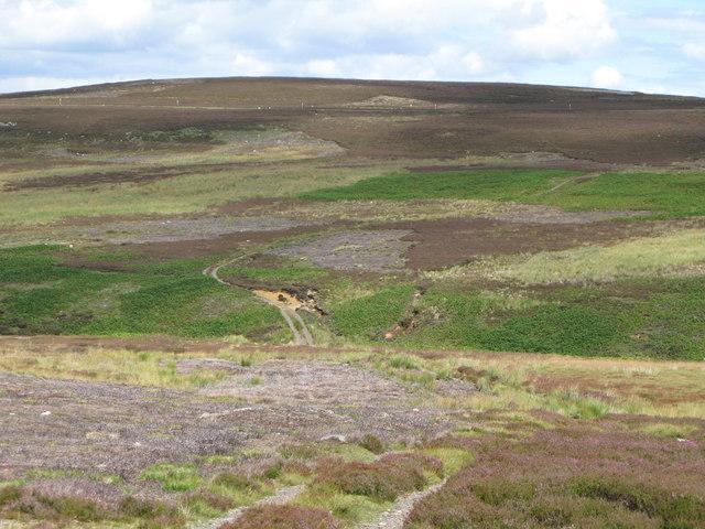 The valley of Feldon Burn (3)