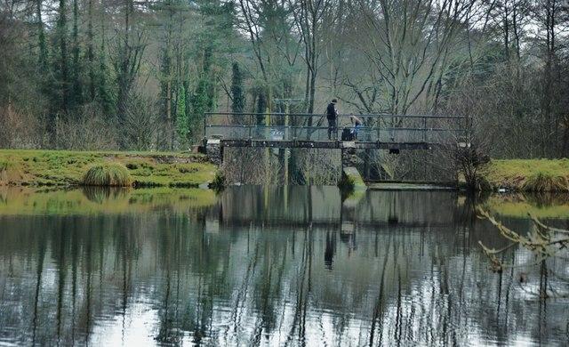 Royston Water: Bridge over the Weir