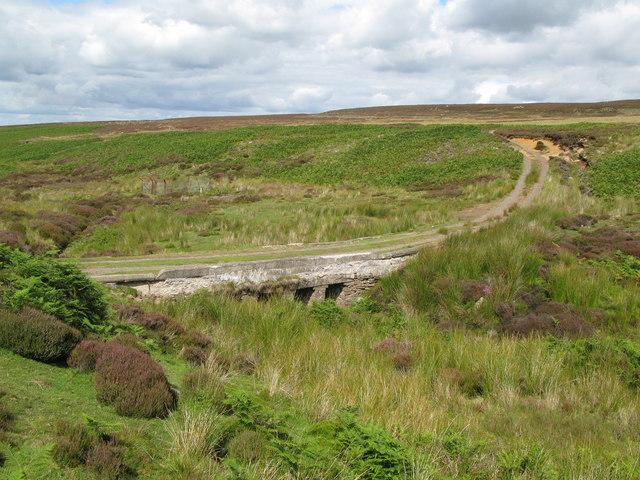 Bridge in the valley of Feldon Burn