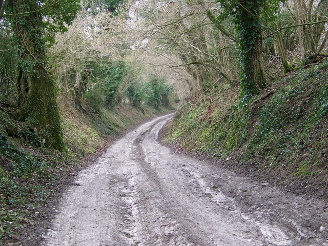 Track near Wood House Hanging