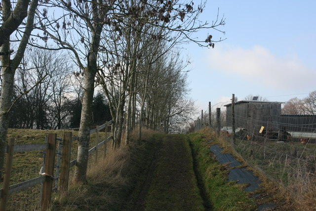 Footpath west of Brambletye