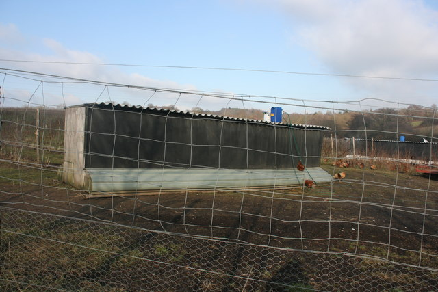 Chicken shed by the bridleway