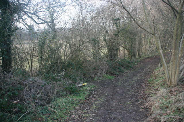 Footpath junction near Brambletye