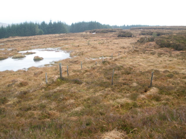 Junction of fences on the moor