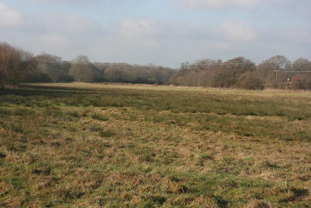 A rough field near Weirwood Reservoir