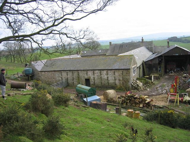 Clark's Hill Farm (Working Dales Pony Centre)