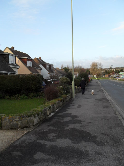 Walking the dog in Cornaway Lane