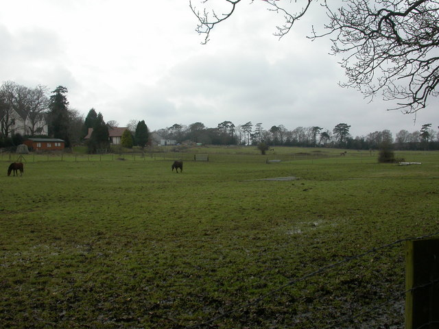 Battramsley, paddocks