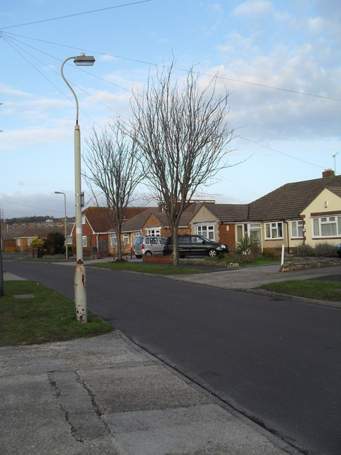 Lamppost in Hatherley Crescent