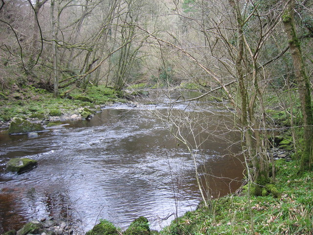 River Irthing, Combcrag Wood