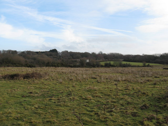 Rough pasture land south of Folders Lane East