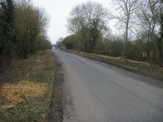 Lane to Garden Centre