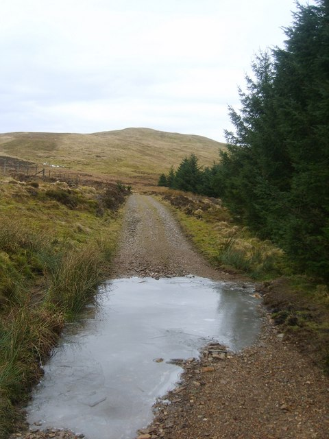 Track at Red Moss