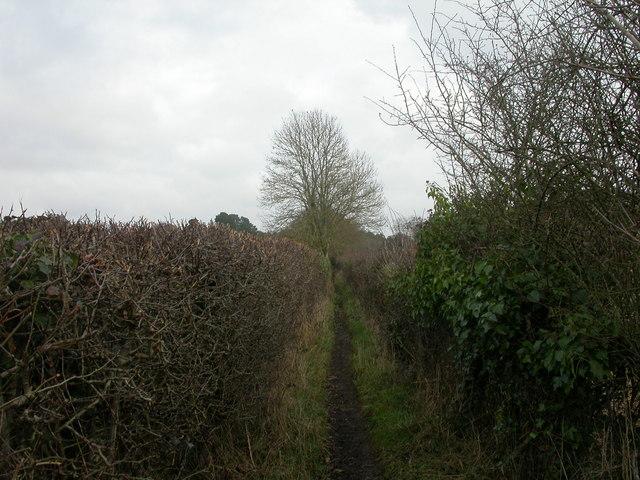 Battramsley, footpath