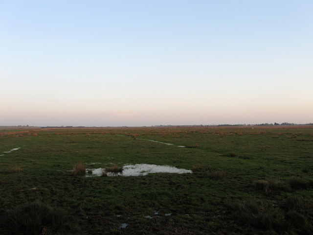 Hooe Trade Marsh