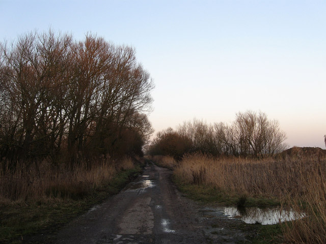Old Marsh Road