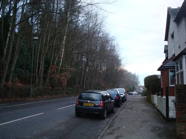 Camelsdale Road, Camelsdale