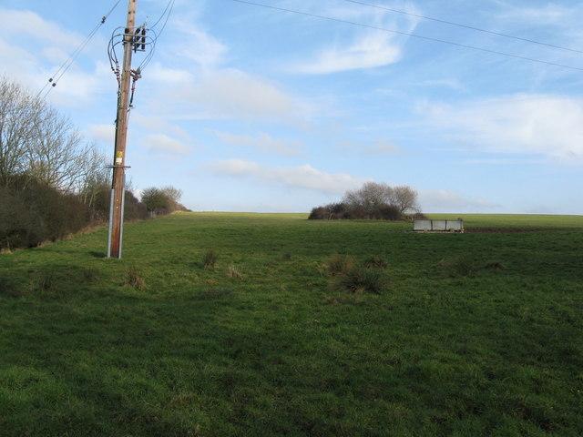 Power lines in field corner near Common Lane