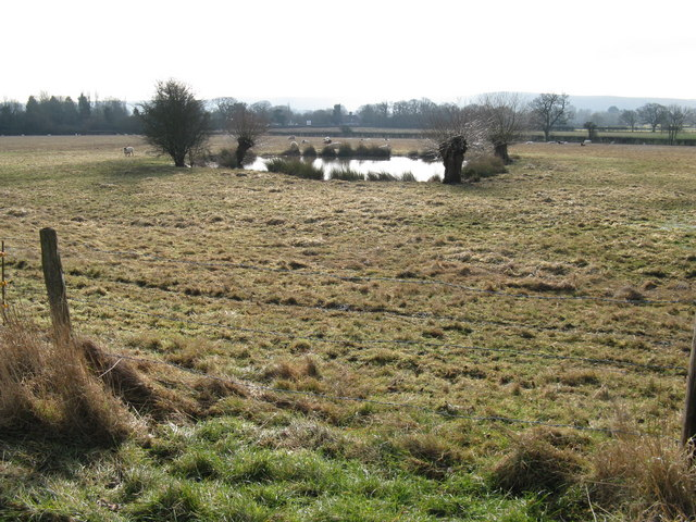 Watering hole for sheep by footpath to Wellhouse Farm