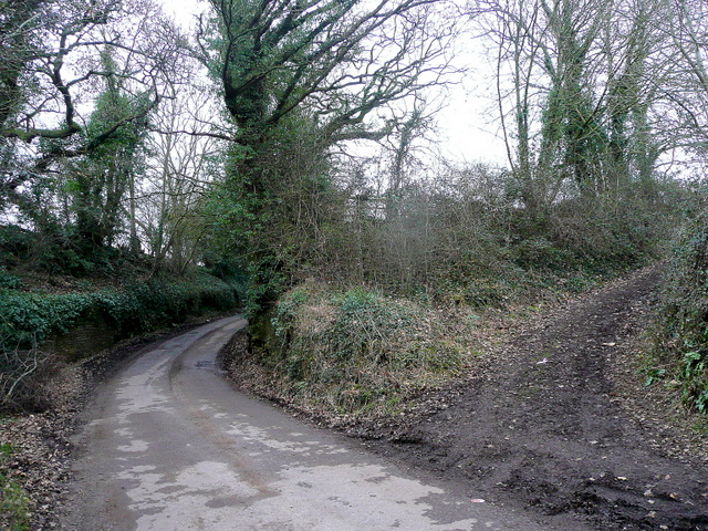 Springetts Lane