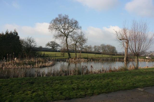 Pond, Busses Farm