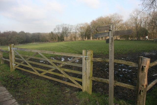 Signpost, bridleway junction, Busses Farm
