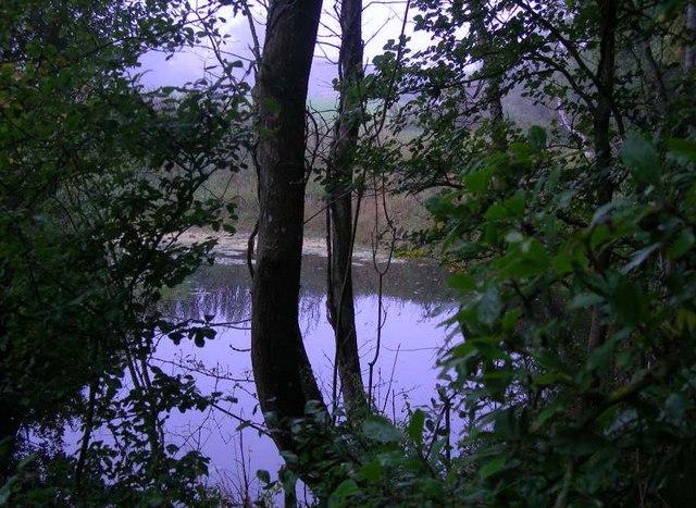 Pond to the north of Leigh Church (Church Farm land)